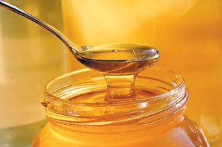 ferma apicola in romania